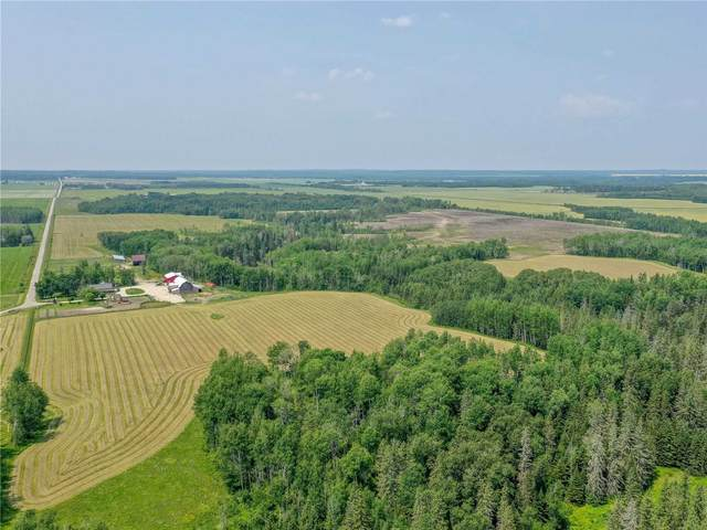 986155 Cattle Rd, Kerns, ON P0J 1E0 (#X5311337) :: Royal Lepage Connect