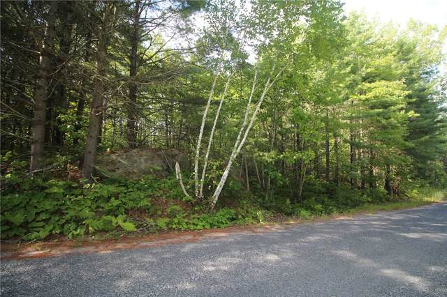 0 Pronto Rd, The North Shore, ON P0R 1A0 (#X5312463) :: Royal Lepage Connect