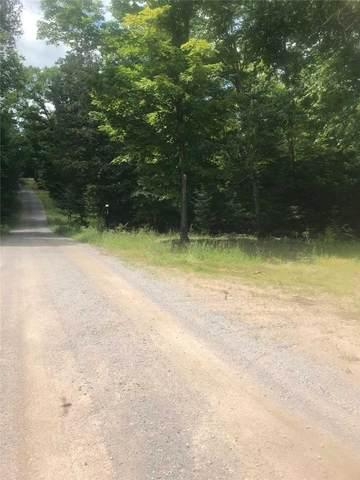 0 Wishman Rd, Madawaska Valley, ON K0J 2E0 (#X5324967) :: Royal Lepage Connect