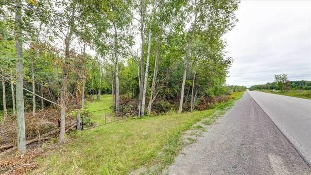791 Mount Horeb Rd, Kawartha Lakes, ON K0L 2W0 (#X5360962) :: Royal Lepage Connect