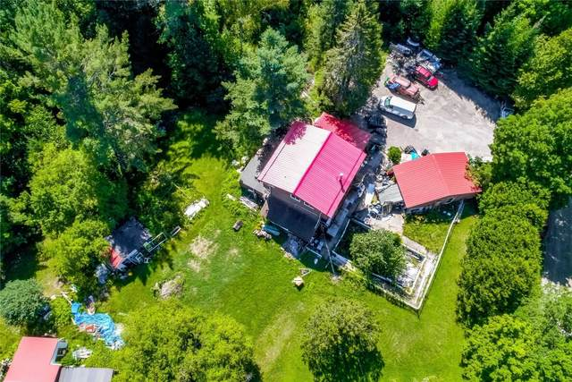 1057 Colonial Rd, Minden Hills, ON K0M 2K0 (#X5363169) :: Royal Lepage Connect