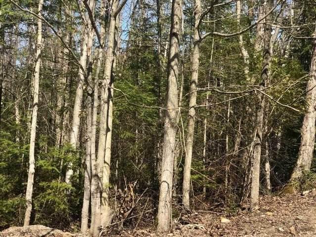 53 Cedar Tr, South Bruce Peninsula, ON N0H 2T0 (#X5377481) :: Royal Lepage Connect
