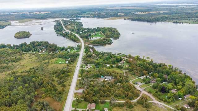 1411 Portage Rd, Kawartha Lakes, ON K0M 2B0 (#X5385300) :: Royal Lepage Connect