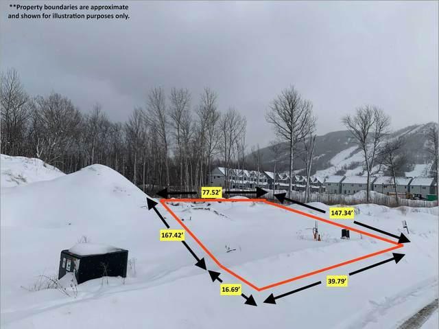 137 Sebastian St, Blue Mountains, ON N0H 1J0 (#X5391505) :: Royal Lepage Connect