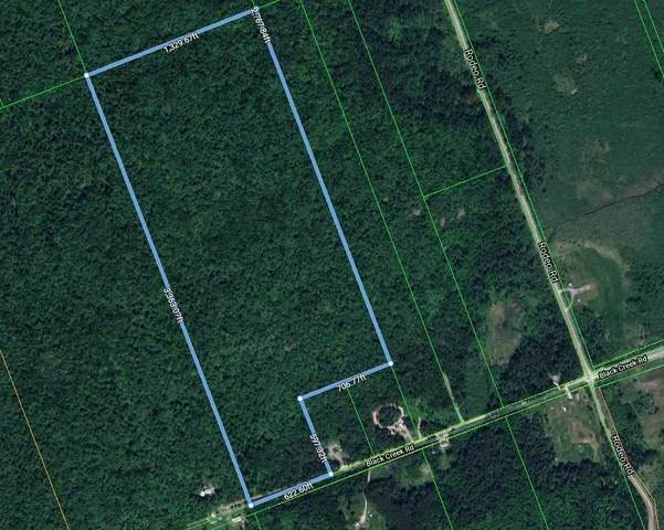 Lt 3 Black Creek Rd, Strong, ON P0A 1Z0 (#X5393421) :: Royal Lepage Connect