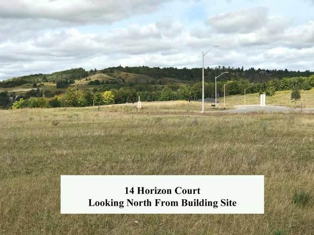 14 Horizon Crt, Kawartha Lakes, ON L0A 1A0 (#X5394700) :: Royal Lepage Connect