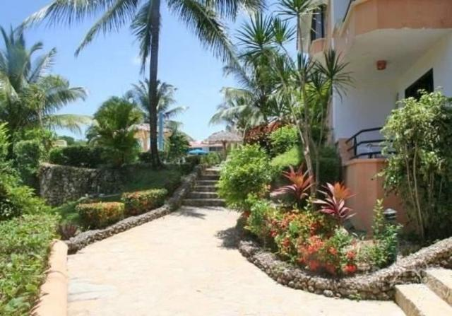 0 Sosua St, Dominican, ON 57000 (#Z4345442) :: Jacky Man   Remax Ultimate Realty Inc.