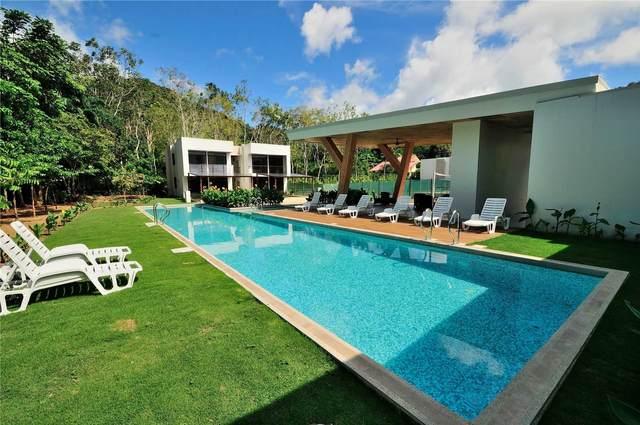1 Barrio Quebrado Seco Sdrd, Costa Rica, ON  (MLS #Z5086683) :: Forest Hill Real Estate Inc Brokerage Barrie Innisfil Orillia