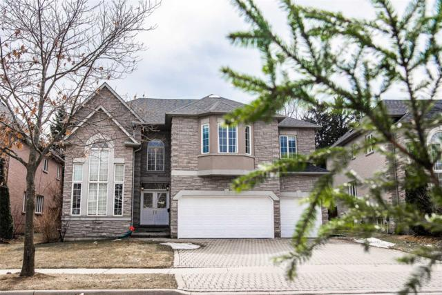 5 Bowan Crt, Toronto, ON M2K 3A8 (#C4412326) :: Jacky Man | Remax Ultimate Realty Inc.