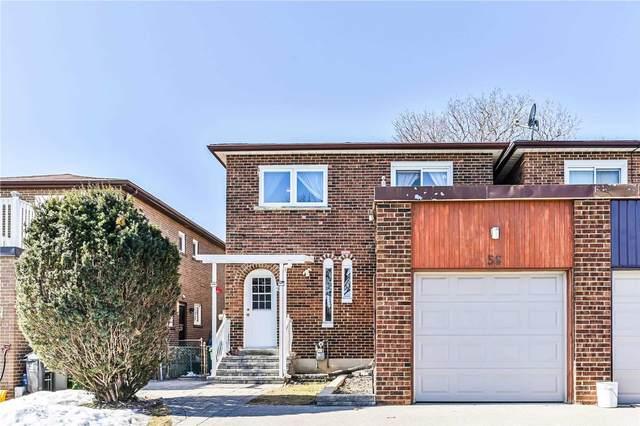 56 Muirhead Rd, Toronto, ON M2J 3W4 (MLS #C5138506) :: Forest Hill Real Estate Inc Brokerage Barrie Innisfil Orillia