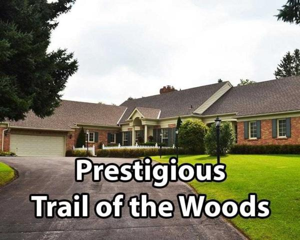 19 Forestview Tr, Whitchurch-Stouffville, ON L4A 2L4 (#N4378170) :: Jacky Man   Remax Ultimate Realty Inc.
