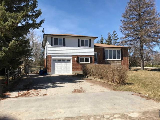 2 Eliza St, Adjala-Tosorontio, ON L0G 1L0 (#N4419093) :: Jacky Man | Remax Ultimate Realty Inc.