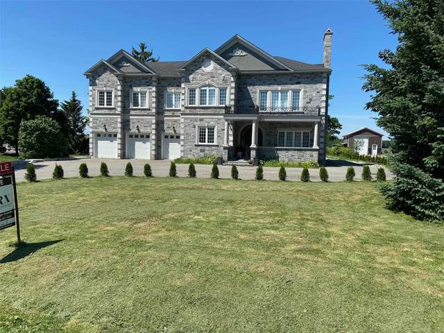 17360 11th Concession Rd, King, ON L0G 1T0 (#N4964320) :: The Johnson Team