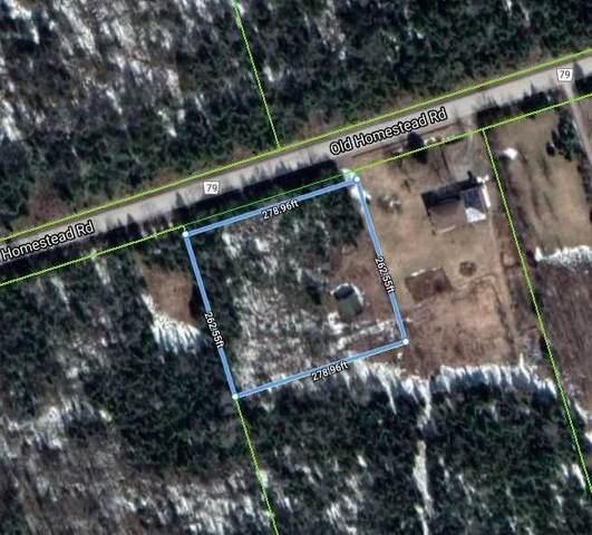 Pt Lt16 Old Homestead Rd, Georgina, ON L0E 1N0 (MLS #N5112729) :: Forest Hill Real Estate Inc Brokerage Barrie Innisfil Orillia