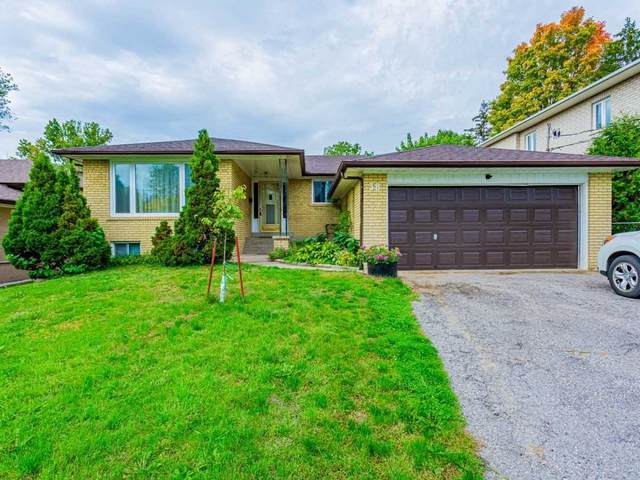38 Proctor Ave, Markham, ON L3T 1M5 (#N5395070) :: Royal Lepage Connect