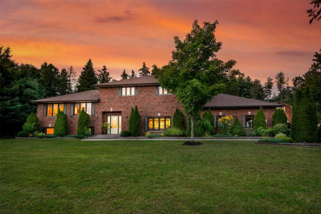 1837 S Old Second Rd, Springwater, ON L9X 1N9 (#S4385684) :: Jacky Man | Remax Ultimate Realty Inc.
