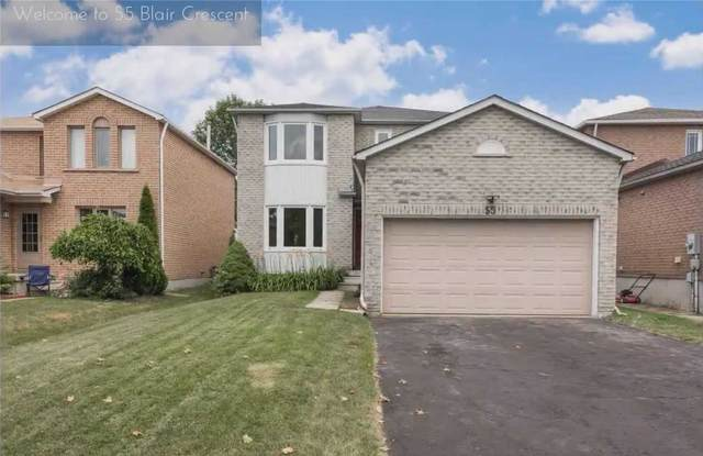 55 Blair Cres, Barrie, ON L4M 5Y6 (#S5123626) :: The Johnson Team