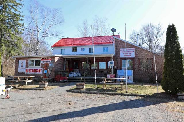 1005 Marble Lake Rd, North Frontenac, ON K0H 1K0 (#X4683979) :: The Ramos Team
