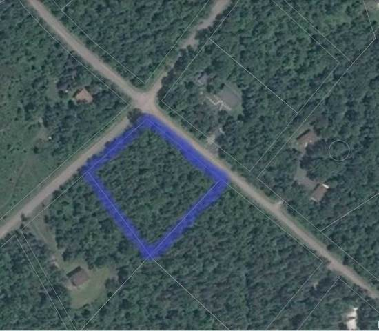 Lot 49 Forest Park Rd, Marmora And Lake, ON K0K 2M0 (#X4718113) :: The Ramos Team