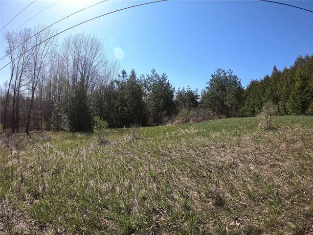 Lt 5-6 W Concession 8 Rd, Trent Hills, ON K0L 1Y0 (#X4722145) :: The Ramos Team