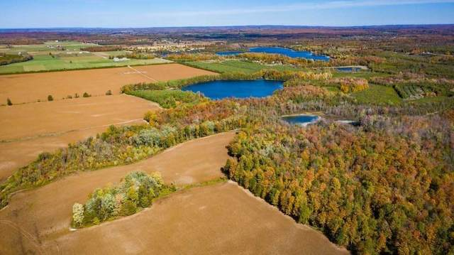 4 Con 4 Pt Lts 23/24 Rd, Chatsworth, ON N0H 2V0 (MLS #X4904563) :: Forest Hill Real Estate Inc Brokerage Barrie Innisfil Orillia