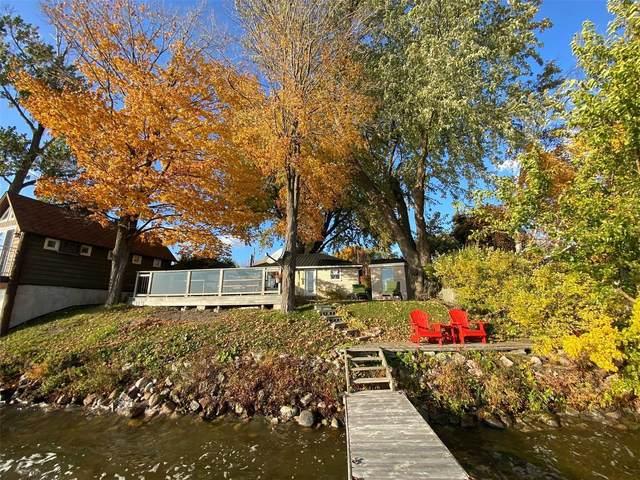 11 Gilson St, Kawartha Lakes, ON K0M 2C0 (#X4958404) :: The Johnson Team