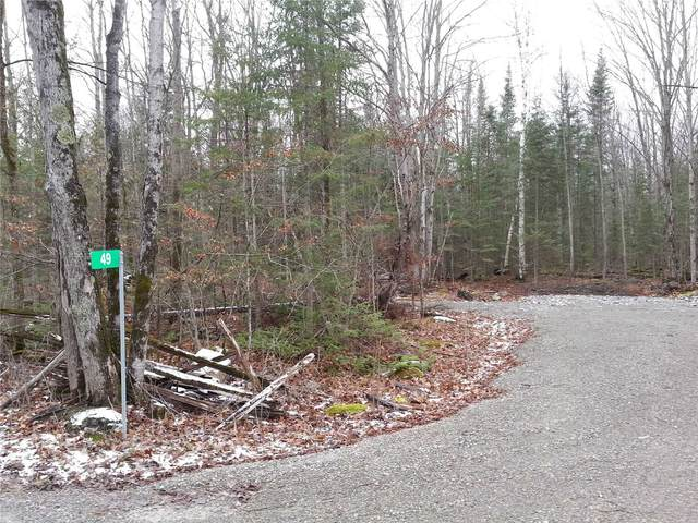 49 Stonehedge Rd, Stone Mills, ON K0H 2H0 (MLS #X5061045) :: Forest Hill Real Estate Inc Brokerage Barrie Innisfil Orillia