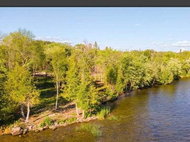 230 Sturgeon Glen Rd, Kawartha Lakes, ON K0M 1N0 (MLS #X5112496) :: Forest Hill Real Estate Inc Brokerage Barrie Innisfil Orillia
