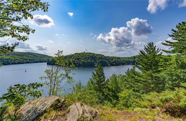 1193 Bobshire Rd, Lake Of Bays, ON P0A 1E0 (#X5340835) :: Royal Lepage Connect