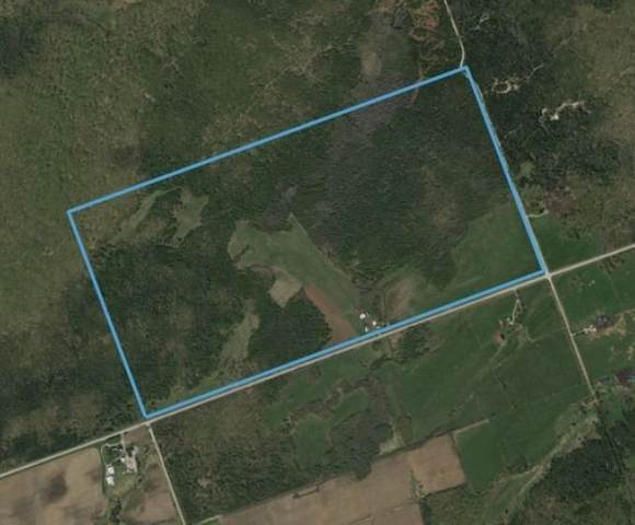 249 Purple Valley Rd, South Bruce Peninsula, ON N0H 2T0 (#X5362883) :: Royal Lepage Connect