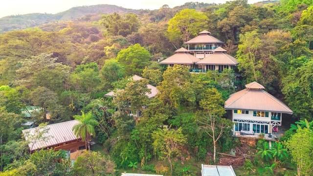 Lot 43A Condominio Laecovila Circ, Costa Rica, ON 20401 (MLS #Z5110568) :: Forest Hill Real Estate Inc Brokerage Barrie Innisfil Orillia