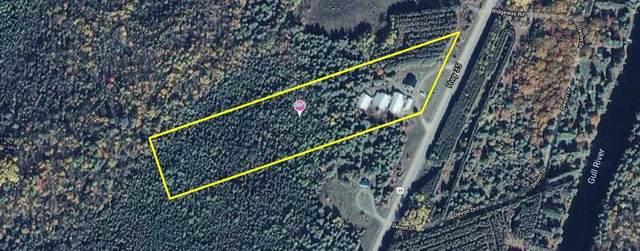 8021 Highway 35, Kawartha Lakes, ON K0M 2L0 (#X4744824) :: The Ramos Team
