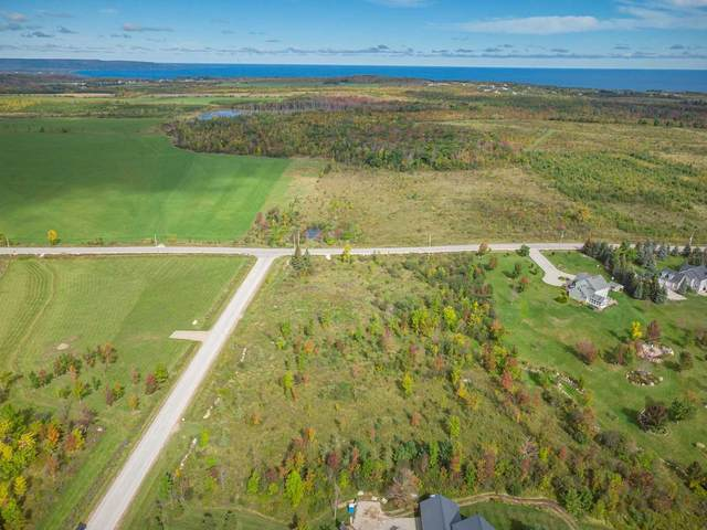 167 Foster St, Meaford, ON N0H 2P0 (#X5382441) :: Royal Lepage Connect