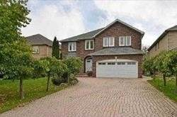 9 Laredo Crt Lower, Toronto, ON M2M 4H8 (#C4606511) :: Jacky Man | Remax Ultimate Realty Inc.