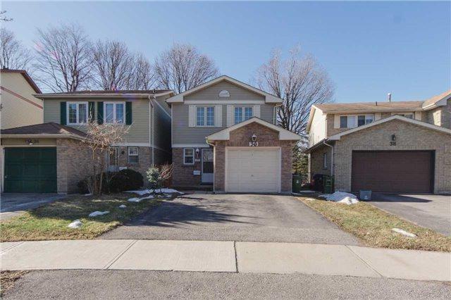36 O'halloran Cres, Toronto, ON M1V 2C3 (#E4107398) :: Beg Brothers Real Estate