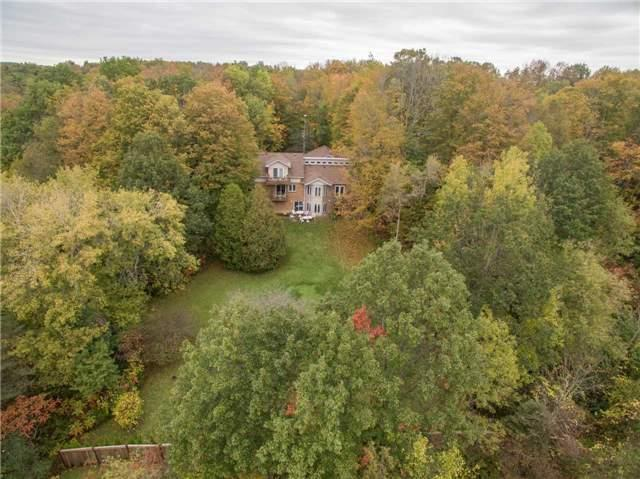 27 Valley Tr, East Gwillimbury, ON L9N 0H8 (#N4128404) :: Beg Brothers Real Estate