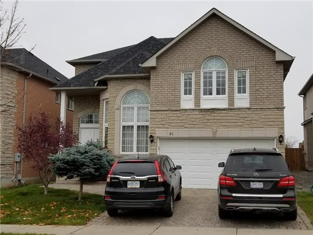 61 Alpine Cres, Richmond Hill, ON L4S 1W1 (#N4132652) :: Beg Brothers Real Estate