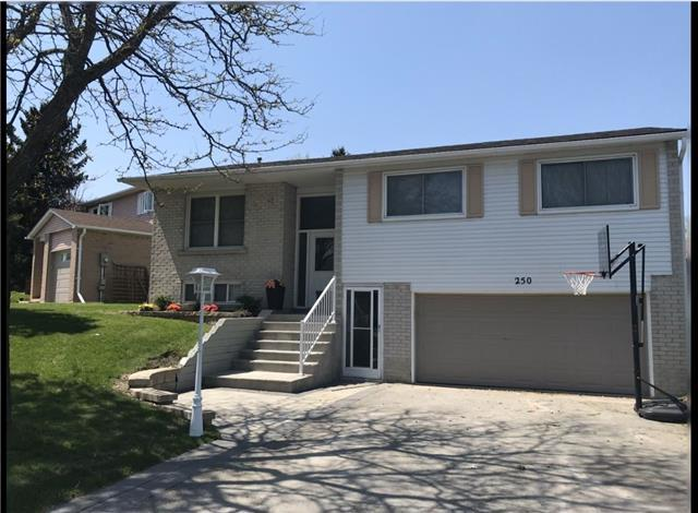 250 Manchester Dr, Newmarket, ON L3Y 6K3 (#N4132766) :: Beg Brothers Real Estate
