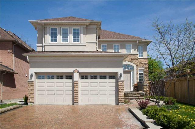 375 Shirley Dr, Richmond Hill, ON L4S 2N4 (#N4134166) :: Beg Brothers Real Estate