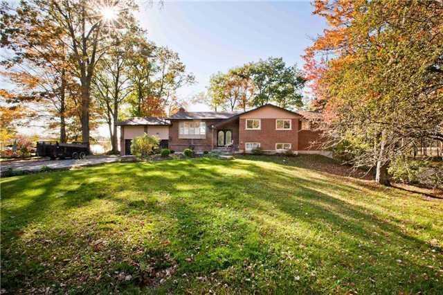 20646 Yonge St, East Gwillimbury, ON L3Y 4V8 (#N4134512) :: Beg Brothers Real Estate