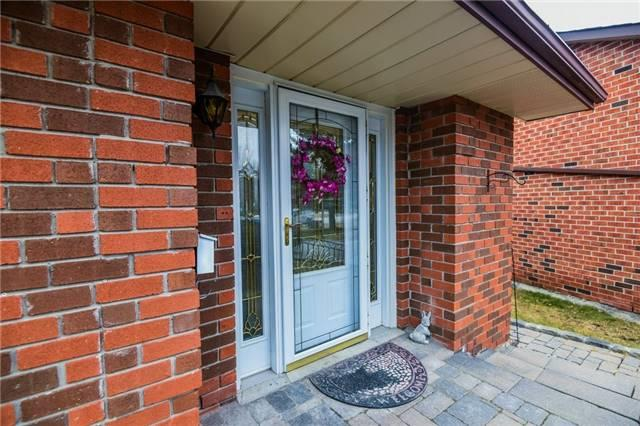 246 Yorkshire Dr, Newmarket, ON L3Y 6J7 (#N4135153) :: Beg Brothers Real Estate