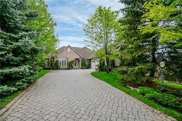 407 Coventry Hill Tr, Newmarket, ON L3X 2G9 (#N4137633) :: Beg Brothers Real Estate