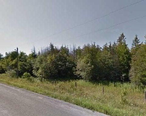 7486 Old Homestead Rd, Georgina, ON L0E 1N0 (#N4490369) :: Jacky Man | Remax Ultimate Realty Inc.