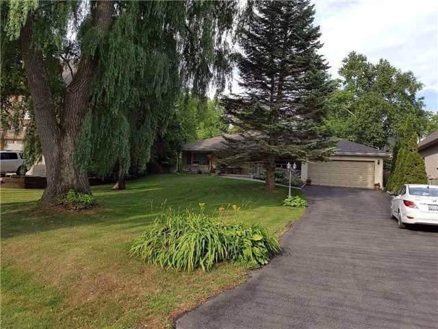 56 Fergus Ave, Richmond Hill, ON L4E 3C1 (#N4581338) :: Jacky Man | Remax Ultimate Realty Inc.