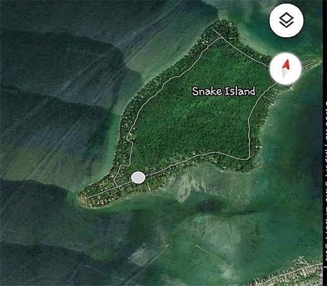 91 Snake Island Rd, Georgina Islands, ON L0E 1R0 (MLS #N5112446) :: Forest Hill Real Estate Inc Brokerage Barrie Innisfil Orillia