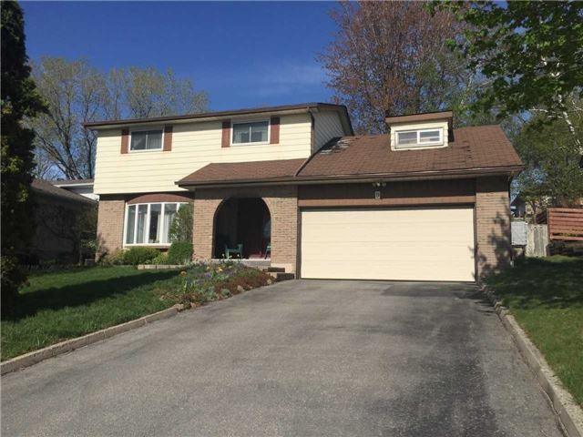 9 Jane Cres, Barrie, ON L4N 3T7 (#S4129539) :: Beg Brothers Real Estate