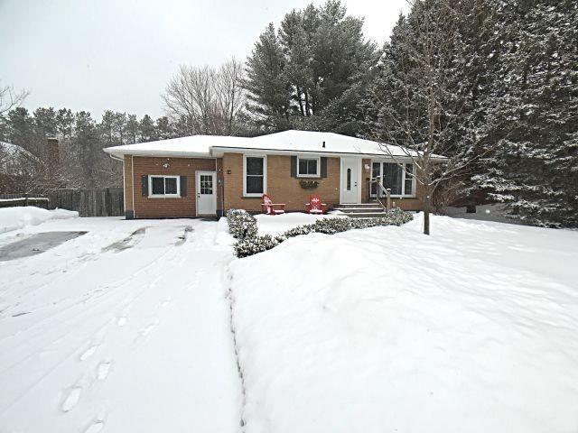 12 Wattie Rd, Springwater, ON L9X 0P8 (#S4378186) :: Jacky Man | Remax Ultimate Realty Inc.