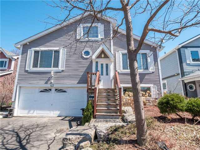 43 Sutter Ave, Brampton, ON L6Z 1G6 (#W4128577) :: Beg Brothers Real Estate