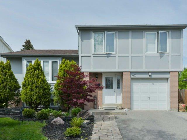 42 Massey St, Brampton, ON L6S 2W3 (#W4135620) :: Beg Brothers Real Estate