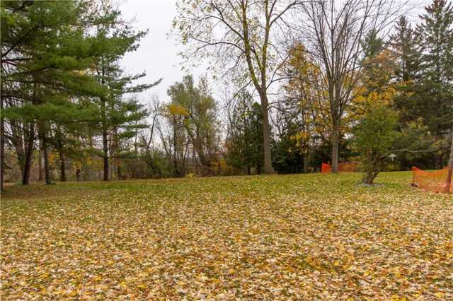 14637** Creditview Rd, Caledon, ON L7C 1N3 (#W4279210) :: Jacky Man   Remax Ultimate Realty Inc.